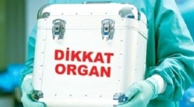 Organ Nakli İçin Yıllarca Sıra Bekleme Derdi Bitti