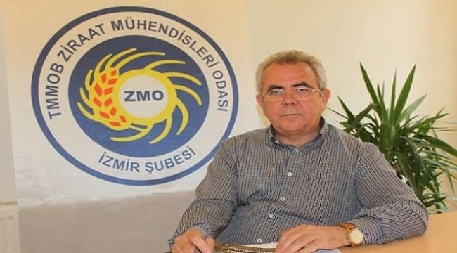 Ziraat Mühendisleri Odası Zeytin Katliamına Sessiz Kalmadı