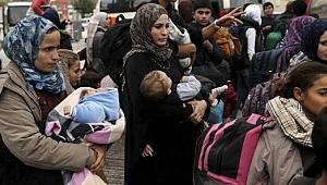 Vatandaşlık Verilen Suriyeli Sayısı Açıklandı