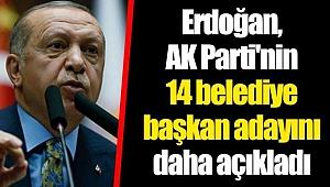 Erdoğan, AK Parti'nin 14 belediye başkan adayını daha açıkladı