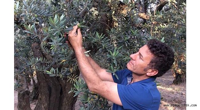 Sarıbal: Tarımı bitirmeye yemin etmişler