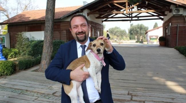 Çiğli'de Pati Dostları Festivalde Buluşacak