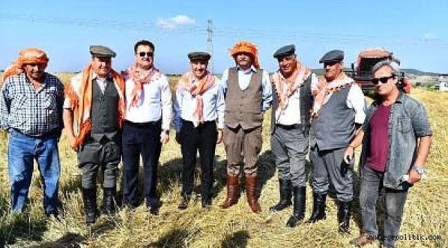 Başkan Soyer elleriyle serptiği karakılçık buğdayının hasadını yaptı