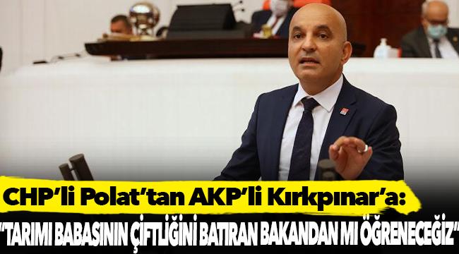 CHP'li Polat'tan AKP'li Kırkpınar'a: Tarımı babasının çiftliğini batıran Bakan'dan mı öğreneceğiz?