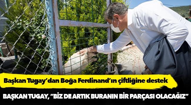 Başkan Tugay'dan Boğa Ferdinand'ın çiftliğine destek